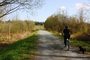 Poco trails