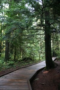 Shoreline Trail in Rocky Point Park, Port Moody2