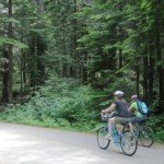 Lower Seymour Conservation Reserve Bike Trails in North Vancouver - A Guide