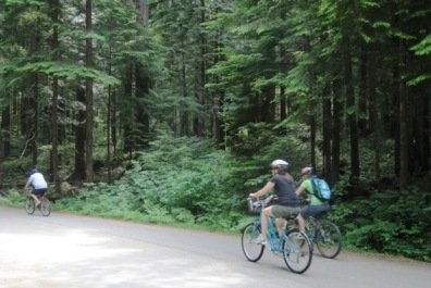 Lower Seymour Conservation Reserve Bike Trails in North Vancouver – A Guide
