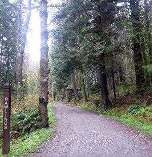 Stanley park rawlings trail