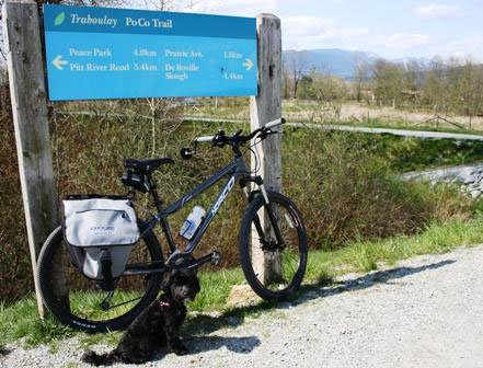 Poco Trail is suitable for the whole family, including the dog!