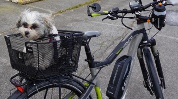 If a Bike has an Assist, is it Still a Bike? Electric Bikes and Public Opinion